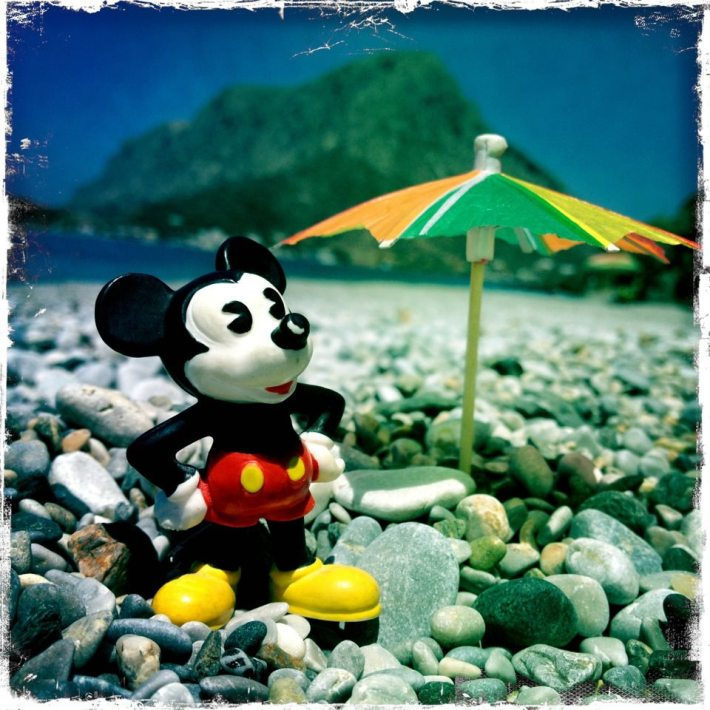 Mickey on Holiday