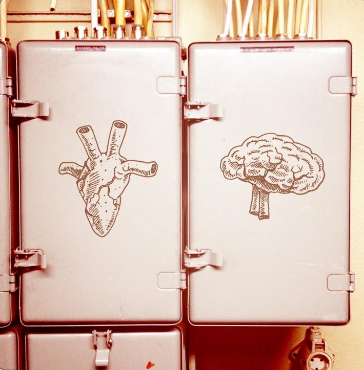Heart / Brain