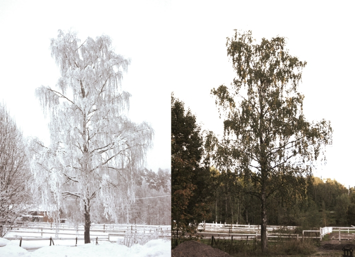 Two Seasons