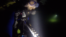 Experienced my first night dive