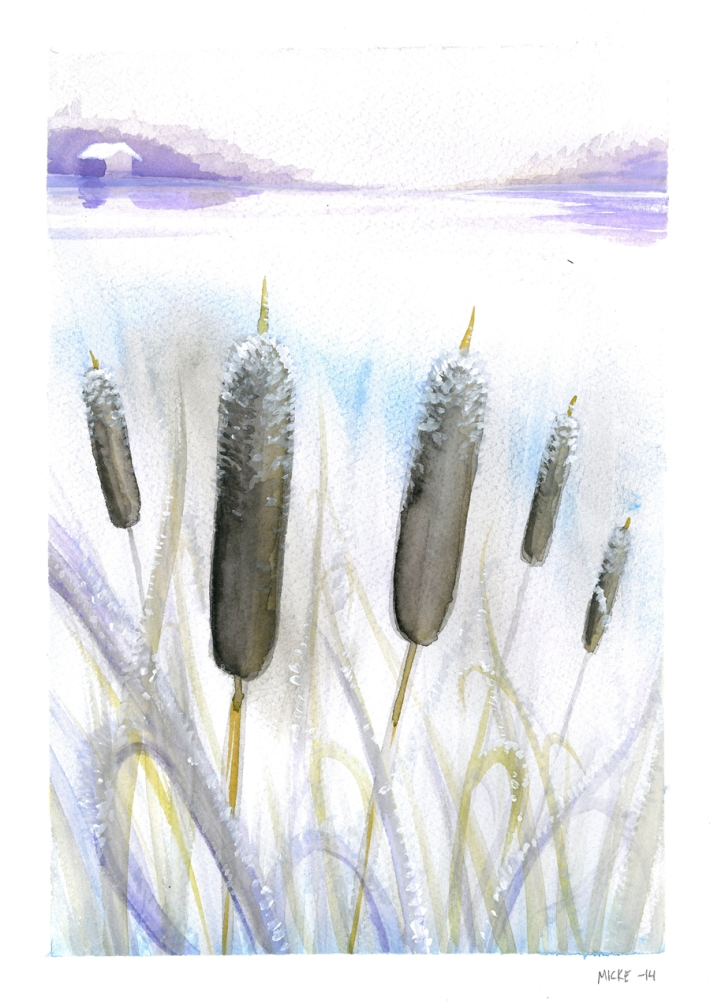 Water_Color_Bulrush