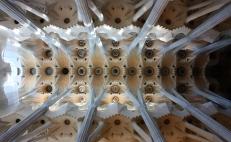 Sagrada Familia / ceiling