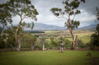 Bonorong Wildlife Sanctuary near Hobart, Tasmania