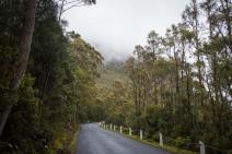 On the way to Mount Wellington.