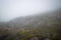 Foggy Mount Wellington.