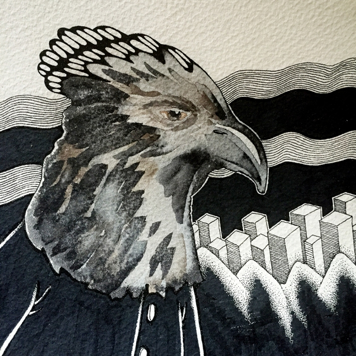 eagle_head_progress2
