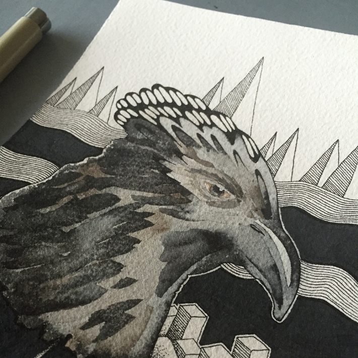 eagle_head_progress3