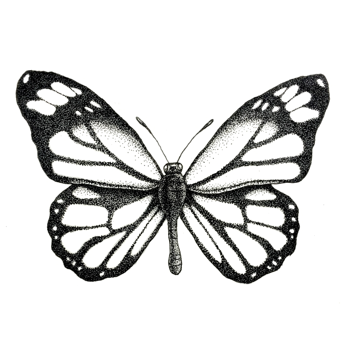 butterfly_one_BW